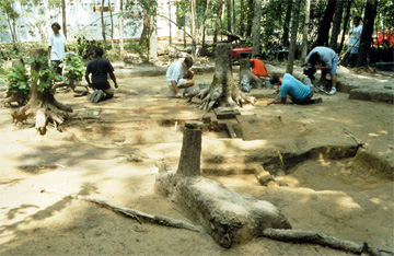 Excavation of the Rich Neck Slave Quarter