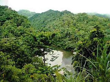 Forests and rivers of Humboldt National Park, Cuba