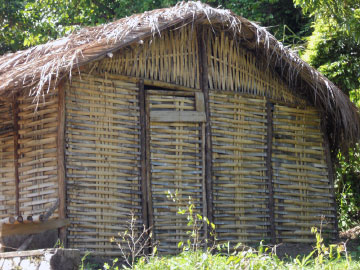 Traditional bamboo thatch house at Moore Town