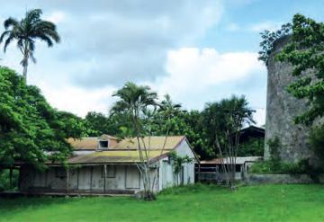 Néron Plantation, Guadeloupe