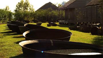 Sugar kettles and slave cabins