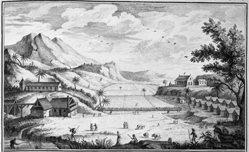 View of a sugar plantation, French West Indies